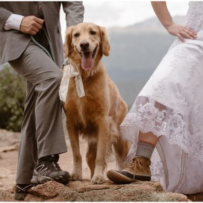 How To Include Your Dog At Your Wedding