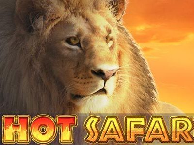 Hot Safari Slot Game review
