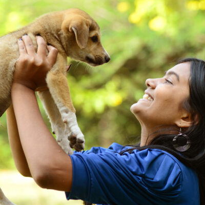 4 Considerations Before Bringing a Furry Friend into Your Family